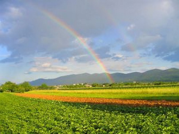 rainbow_2150736.jpg